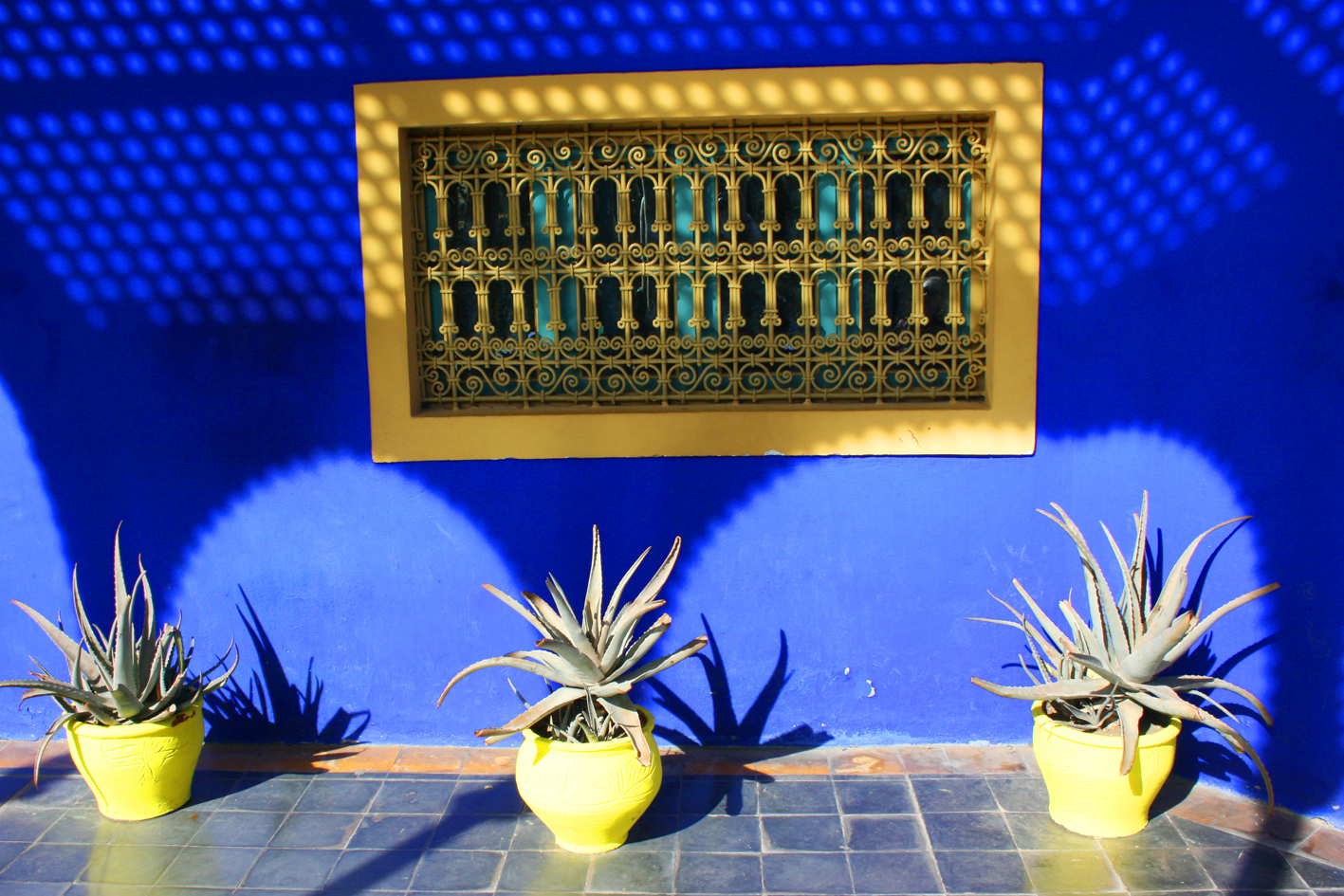 maj_blue_wall_yellow_pots