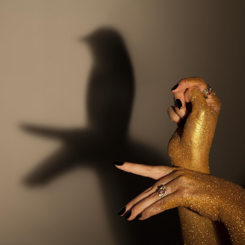 ancient_awe_stacking_rings_bird_shadow