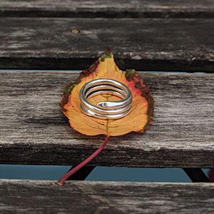 silver_snake_leaf